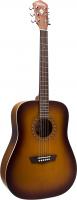 Акустическая гитара Washburn WD7 SATBM