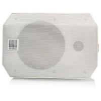 AMC VIVA 4 IP White настенная акустическая система
