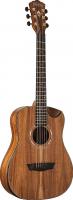 Акустическая гитара Washburn WCGM55K