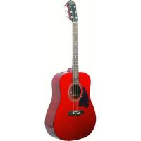 Акустическая гитара Washburn OG2TR