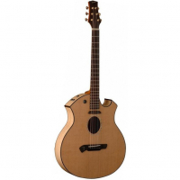Электроакустическая гитара Parker P8 EN-BK