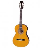 Гитарный набор Aria CGP 001