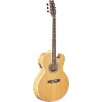 Электроакустическая гитара Washburn EA20 SDL