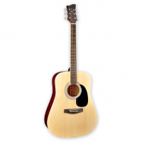 Акустическая гитара Jay Turser JJ45 PAK N