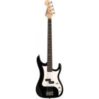 5-струнная бас-гитара Washburn SB15PB